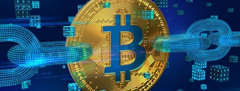 Bitcoin Wallet Stats: These Numbers Are Real